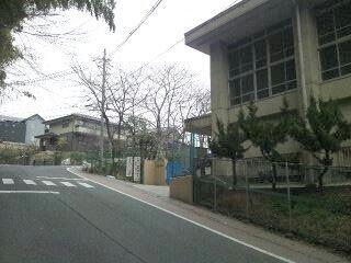 桃山東小学校