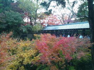 臥雲橋の紅葉