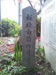 板橋白菊の井戸