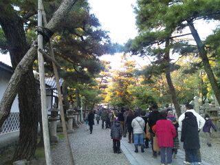 御香宮神社/初詣